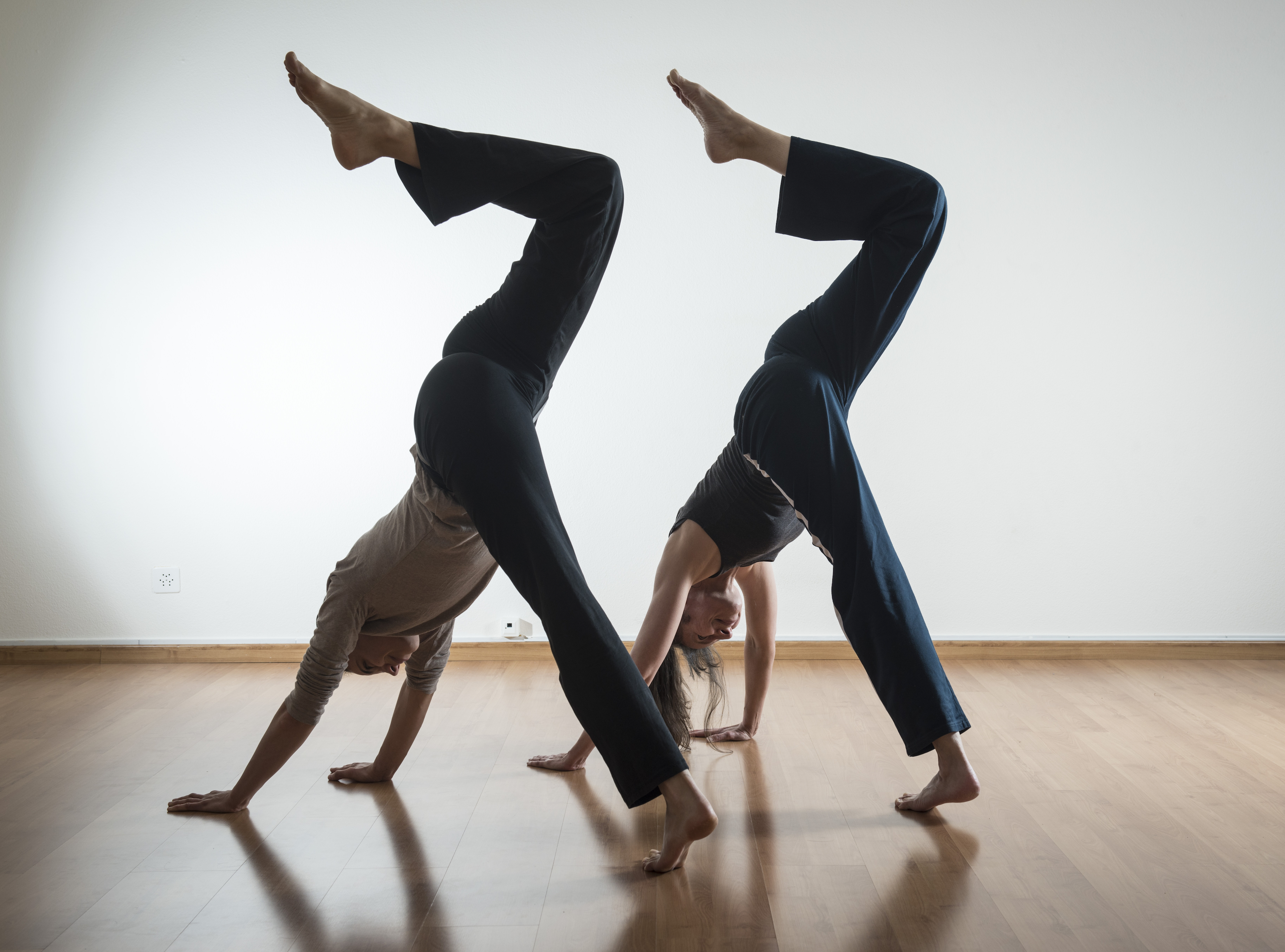 Yoga Animal flow